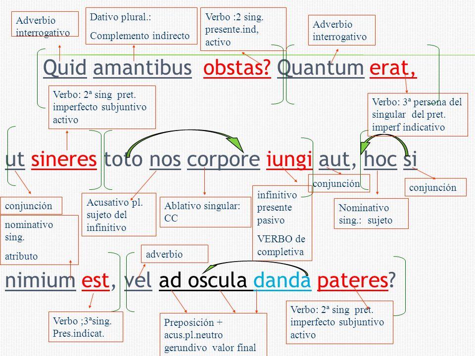 Quid amantibus obstas Quantum erat,