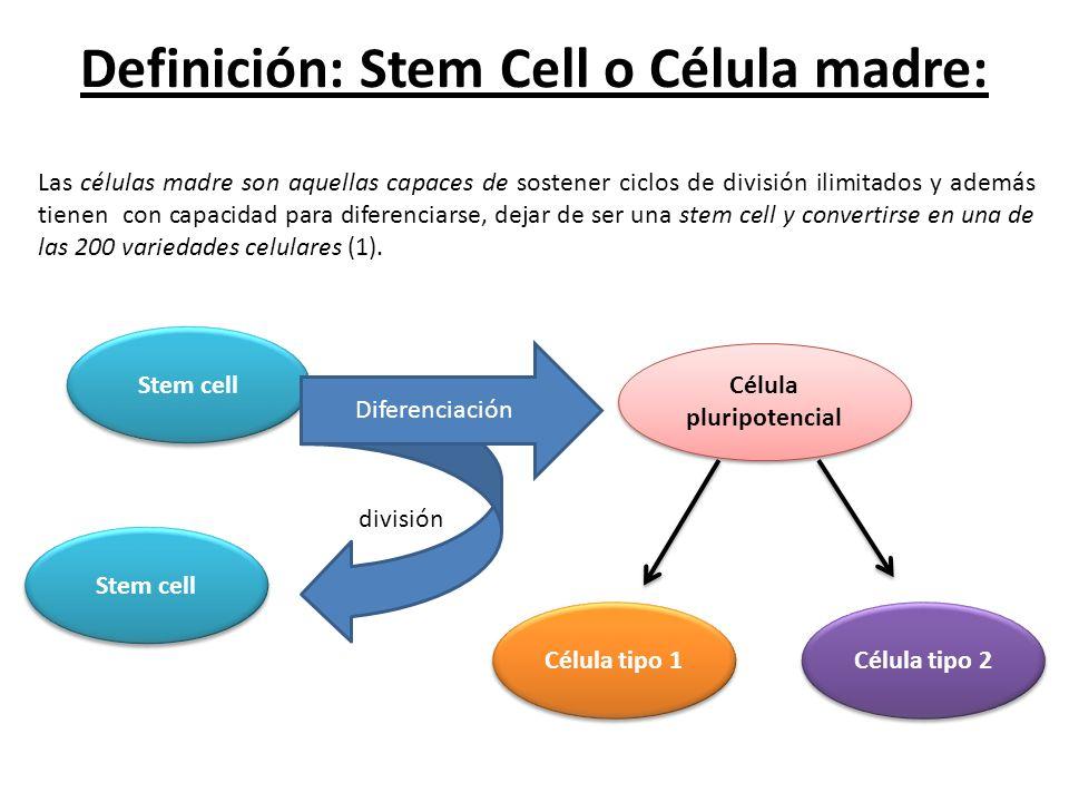 Definición: Stem Cell o Célula madre: