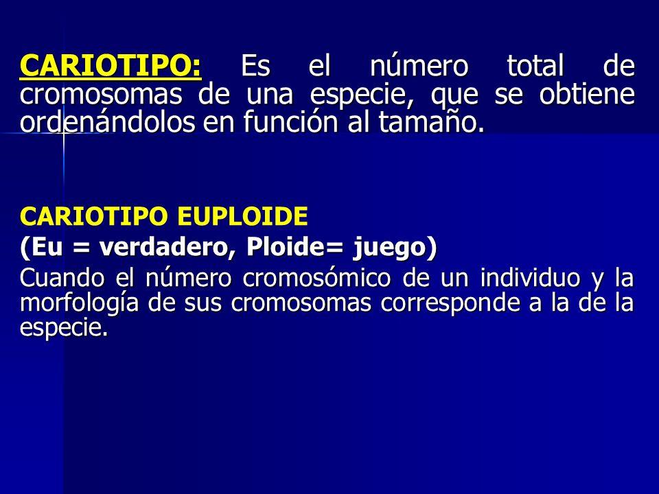 CARIOTIPO: Es el número total de cromosomas de una especie, que se obtiene ordenándolos en función al tamaño.