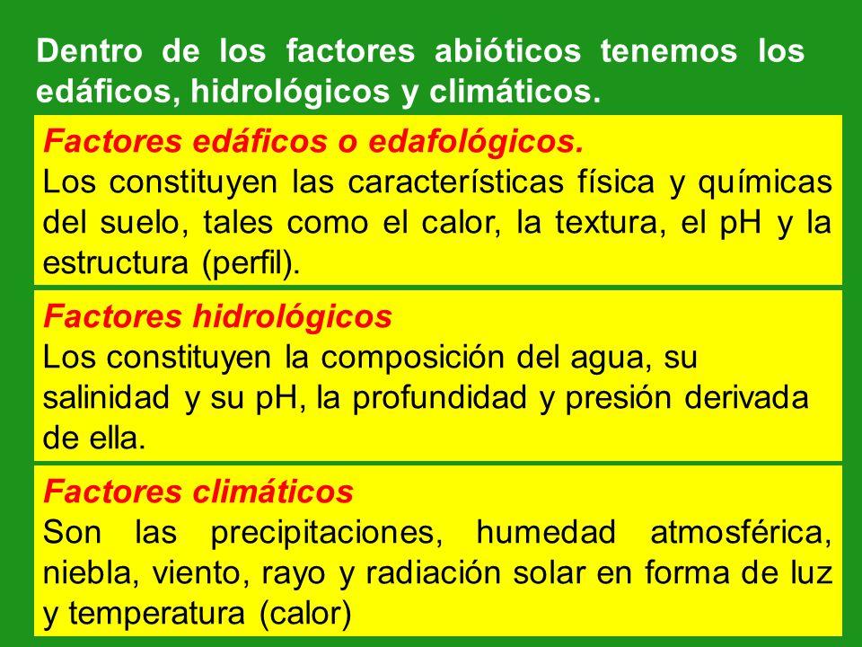 Dentro de los factores abióticos tenemos los edáficos, hidrológicos y climáticos.