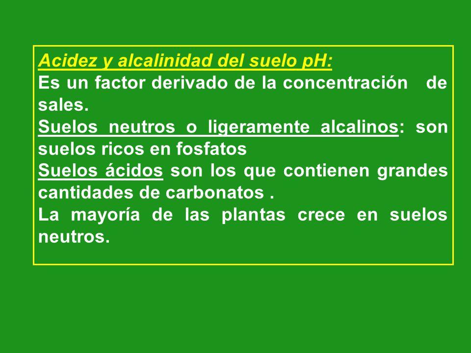 Acidez y alcalinidad del suelo pH: