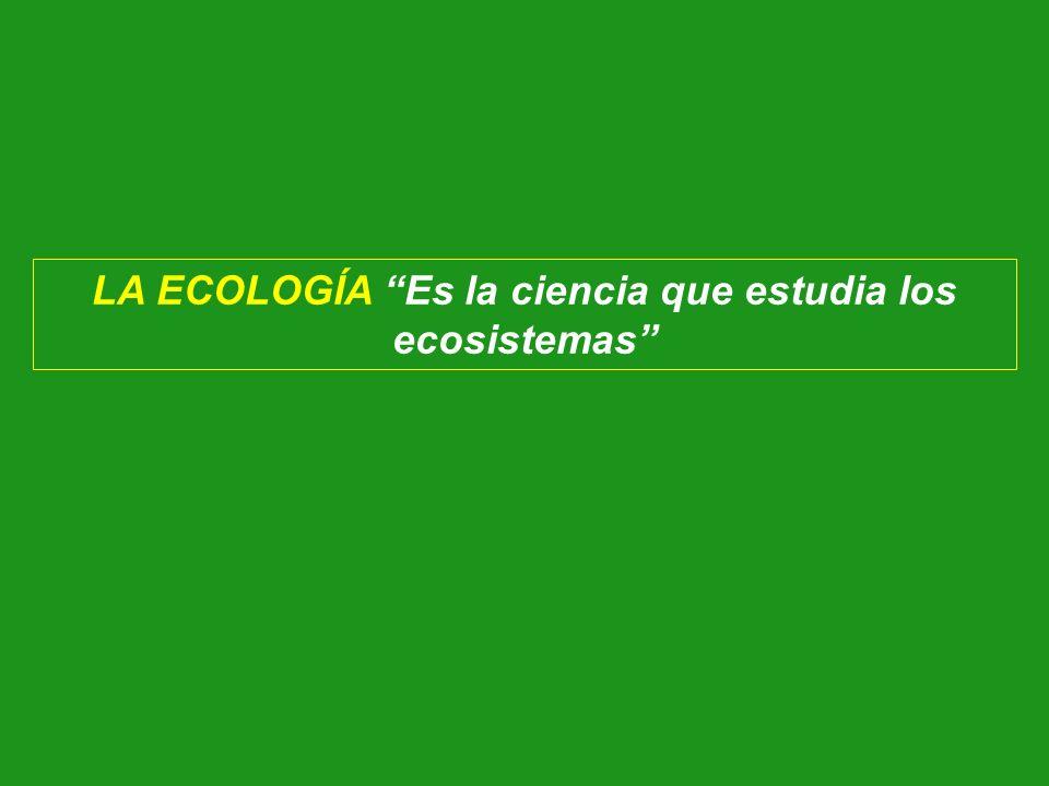 LA ECOLOGÍA Es la ciencia que estudia los ecosistemas