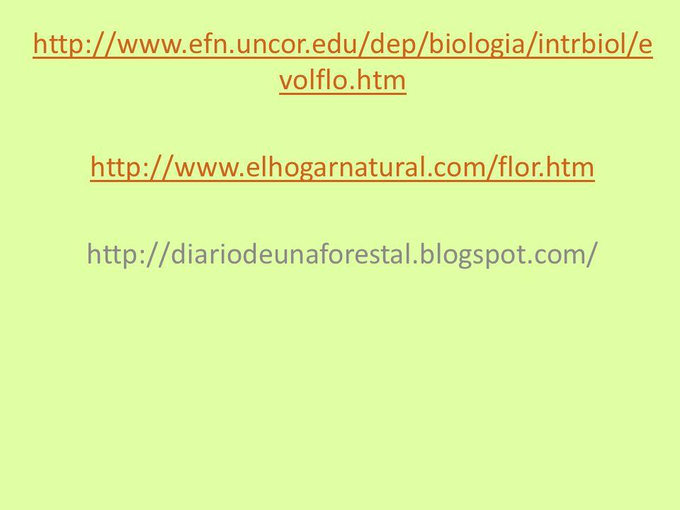 http://www.efn.uncor.edu/dep/biologia/intrbiol/evolflo.htm http://www.elhogarnatural.com/flor.htm.