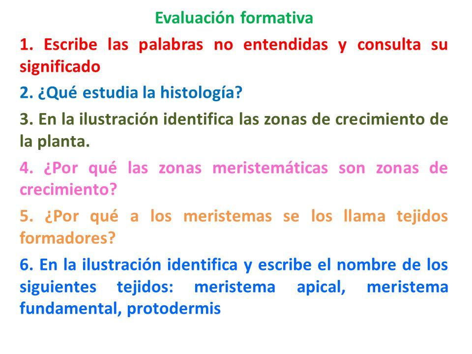 Evaluación formativa 1. Escribe las palabras no entendidas y consulta su significado. 2. ¿Qué estudia la histología