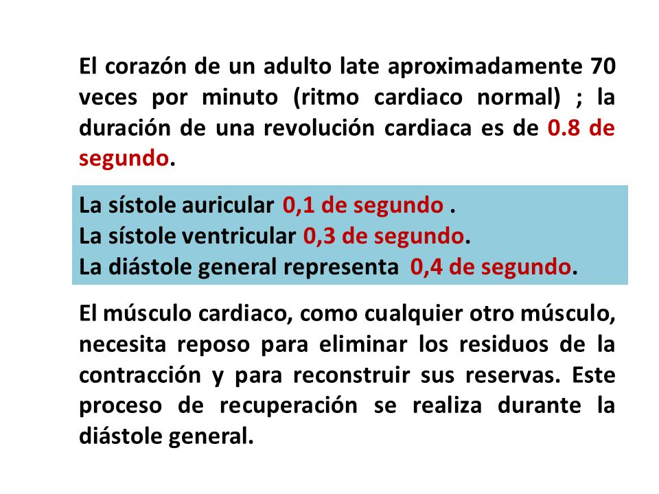 El corazón de un adulto late aproximadamente 70 veces por minuto (ritmo cardiaco normal) ; la duración de una revolución cardiaca es de 0.8 de segundo.