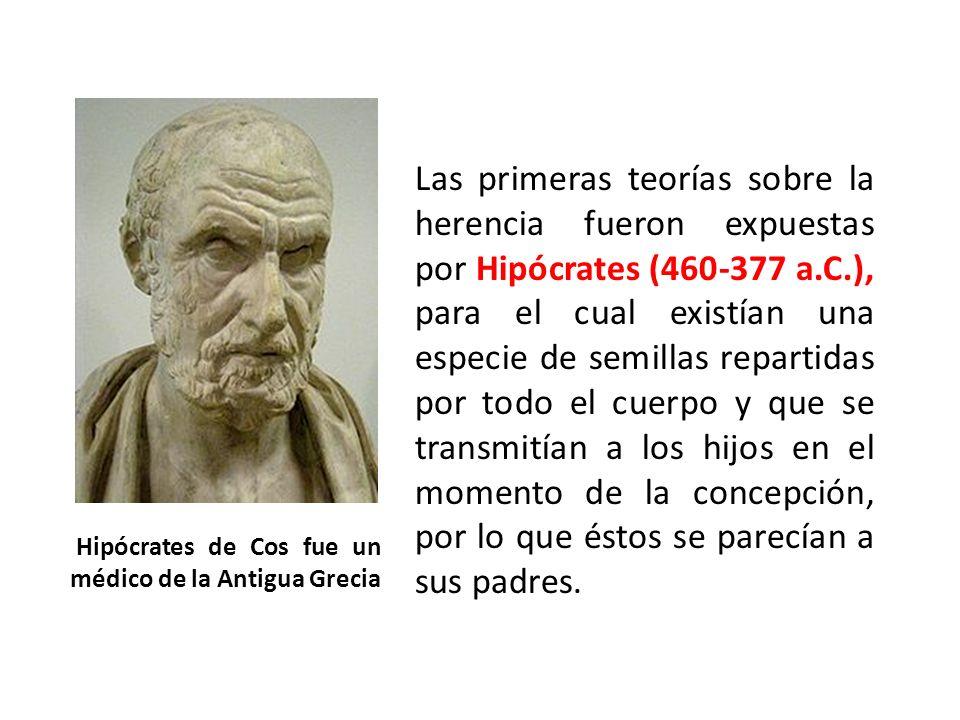 Hipócrates de Cos fue un médico de la Antigua Grecia