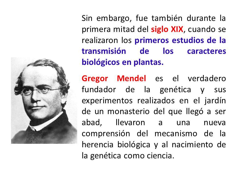 Sin embargo, fue también durante la primera mitad del siglo XIX, cuando se realizaron los primeros estudios de la transmisión de los caracteres biológicos en plantas.