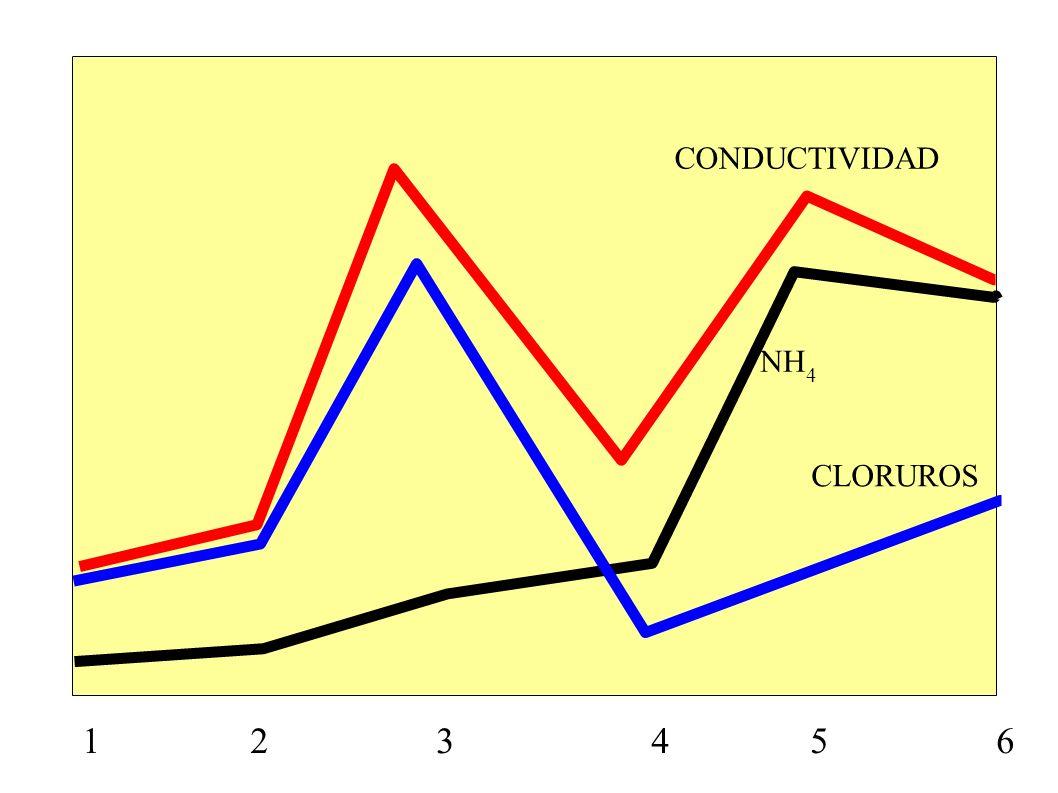 CONDUCTIVIDAD NH4. CLORUROS.