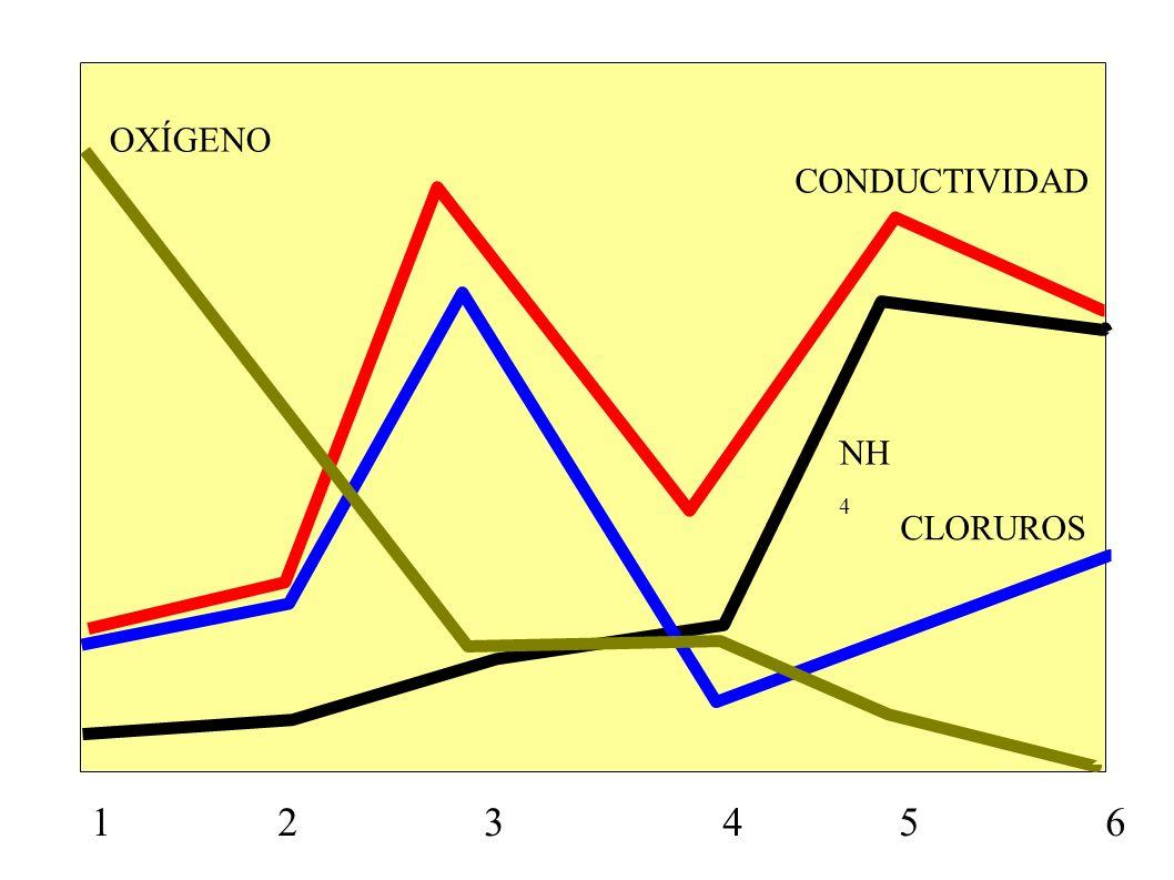 OXÍGENOCONDUCTIVIDAD.NH4. CLORUROS.