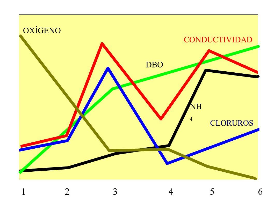 OXÍGENOCONDUCTIVIDAD.DBO. NH4. CLORUROS.