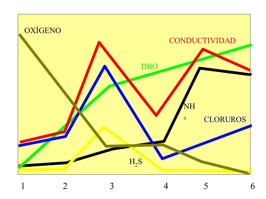 OXÍGENOCONDUCTIVIDAD.DBO. NH4. CLORUROS. H2S.