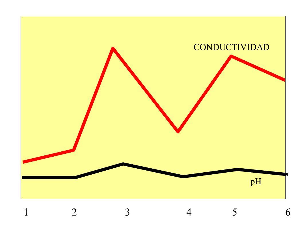 CONDUCTIVIDAD pH.