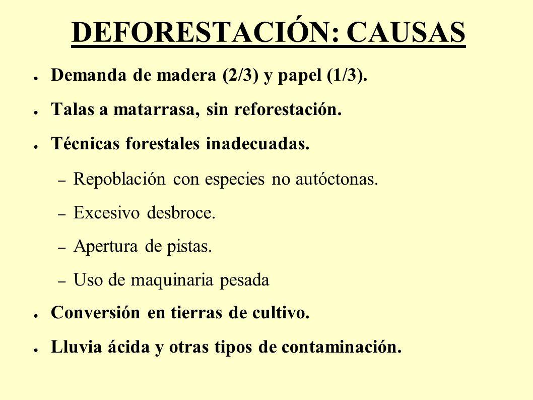 DEFORESTACIÓN: CAUSAS