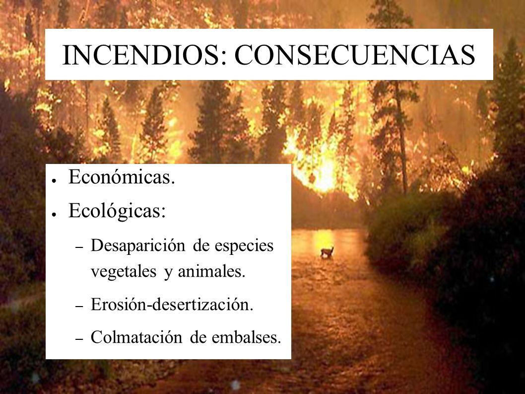 INCENDIOS: CONSECUENCIAS