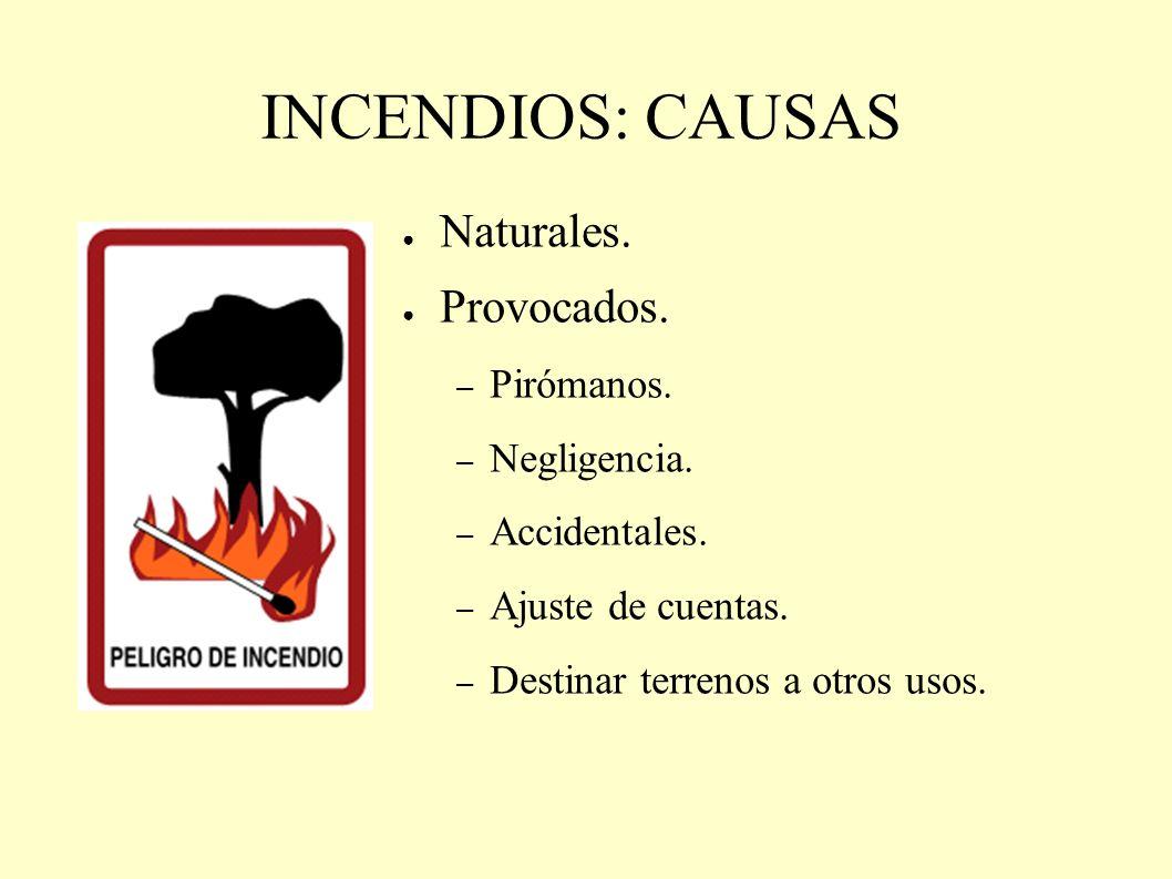 INCENDIOS: CAUSAS Naturales. Provocados. Pirómanos. Negligencia.