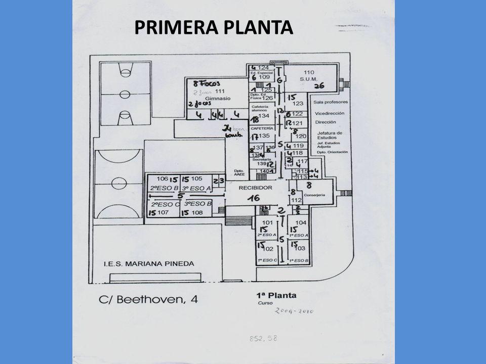 PRIMERA PLANTA