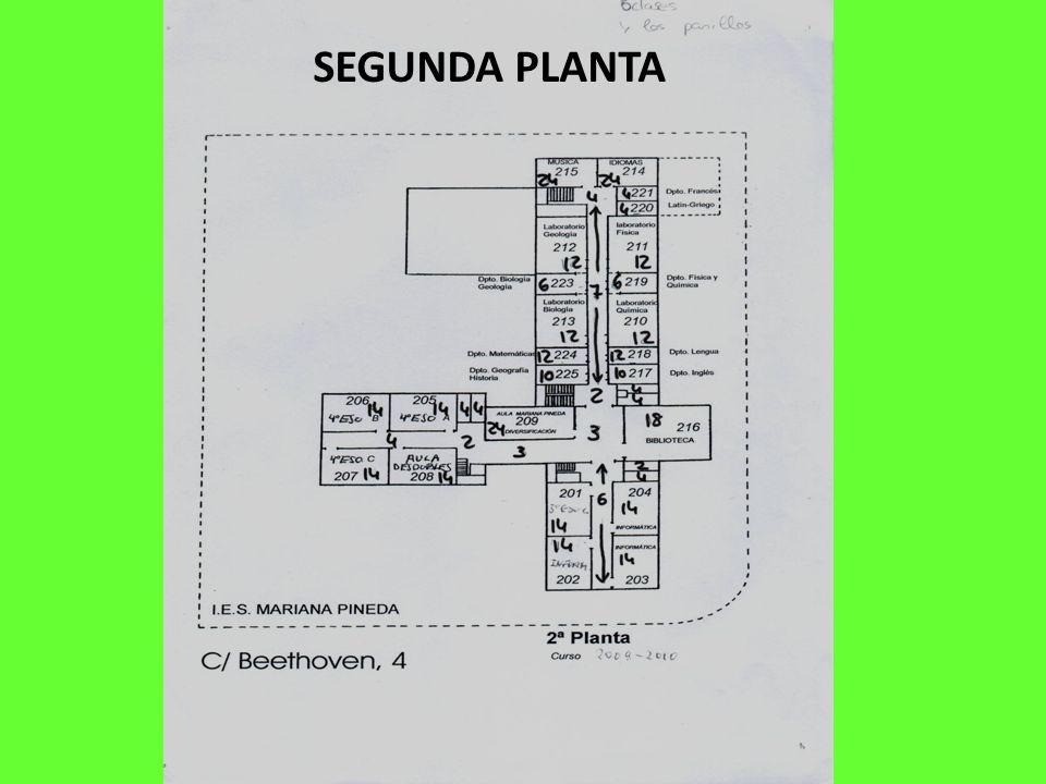SEGUNDA PLANTA