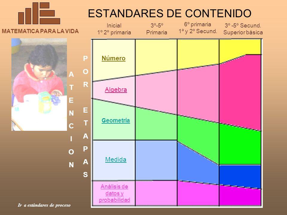 ESTANDARES DE CONTENIDO