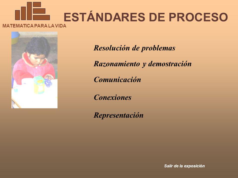 ESTÁNDARES DE PROCESO Resolución de problemas