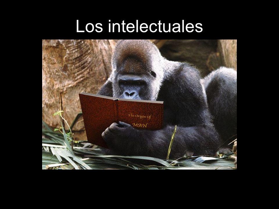 Los intelectuales