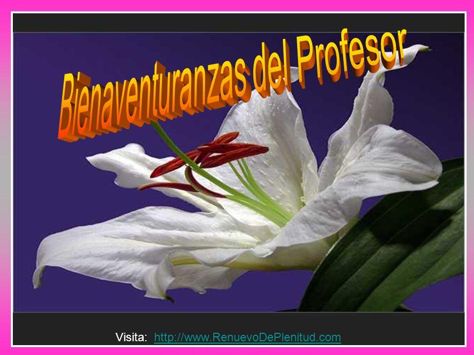 Bienaventuranzas del Profesor