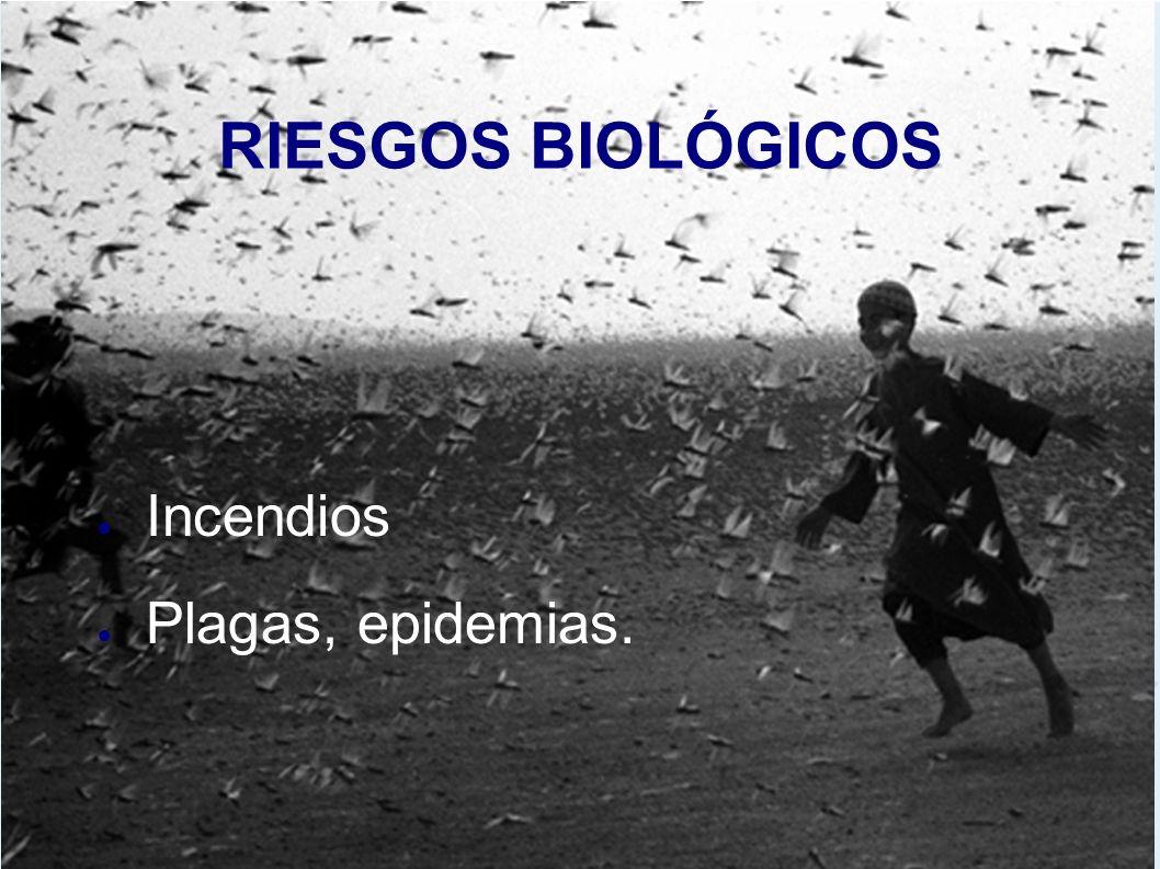 RIESGOS BIOLÓGICOS Incendios Plagas, epidemias.