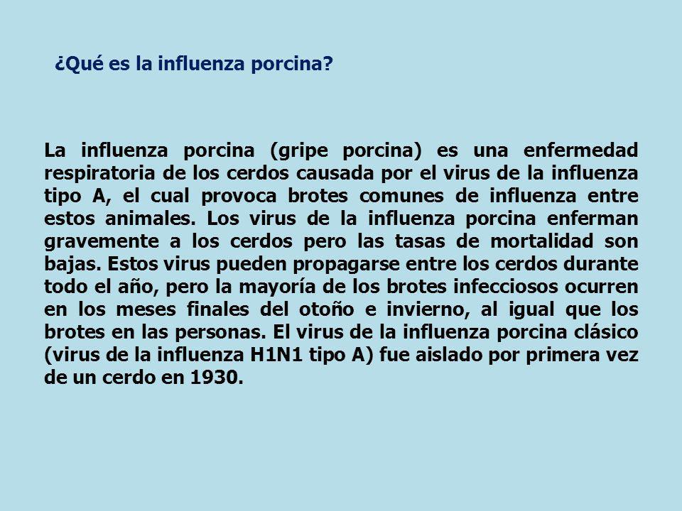¿Qué es la influenza porcina