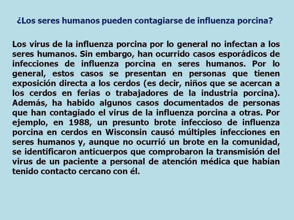 ¿Los seres humanos pueden contagiarse de influenza porcina