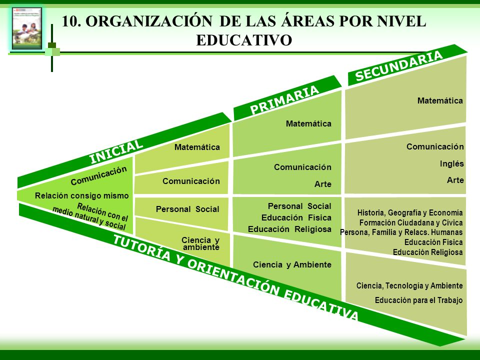 10. ORGANIZACIÓN DE LAS ÁREAS POR NIVEL EDUCATIVO