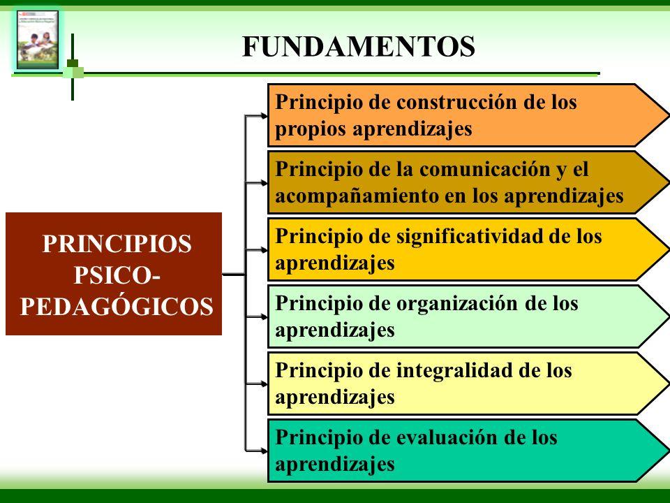 PRINCIPIOS PSICO- PEDAGÓGICOS