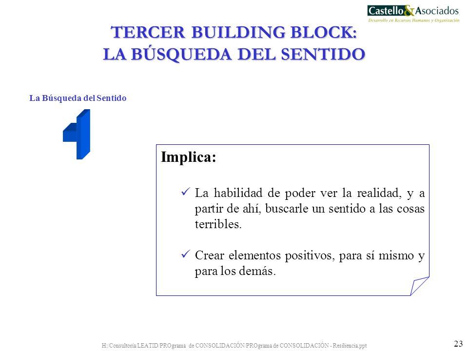 TERCER BUILDING BLOCK: LA BÚSQUEDA DEL SENTIDO