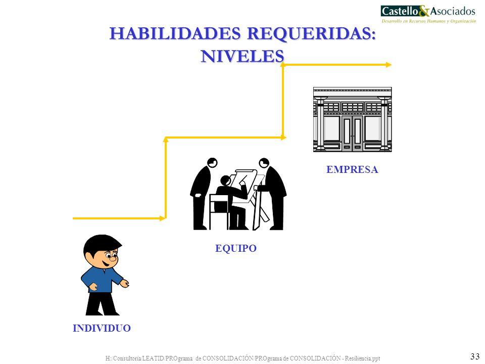HABILIDADES REQUERIDAS: NIVELES