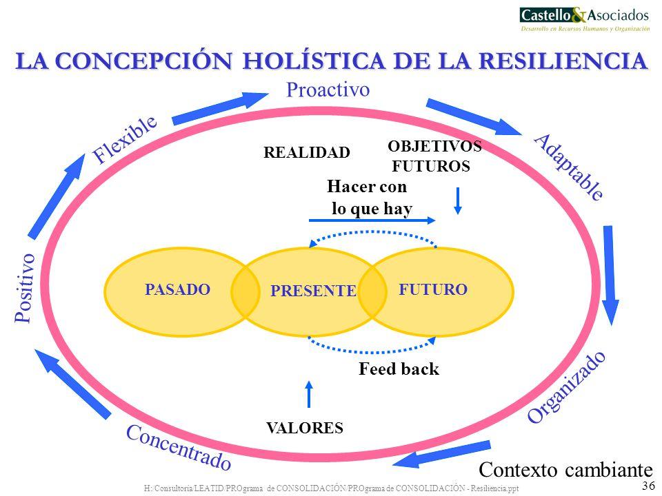LA CONCEPCIÓN HOLÍSTICA DE LA RESILIENCIA
