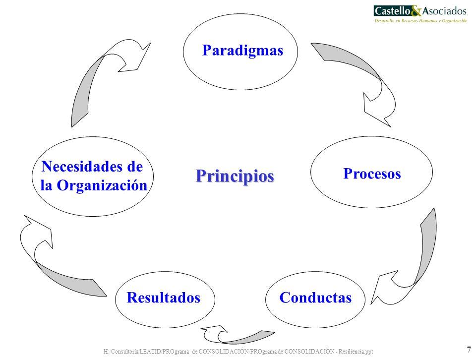 Principios Paradigmas Necesidades de la Organización Procesos