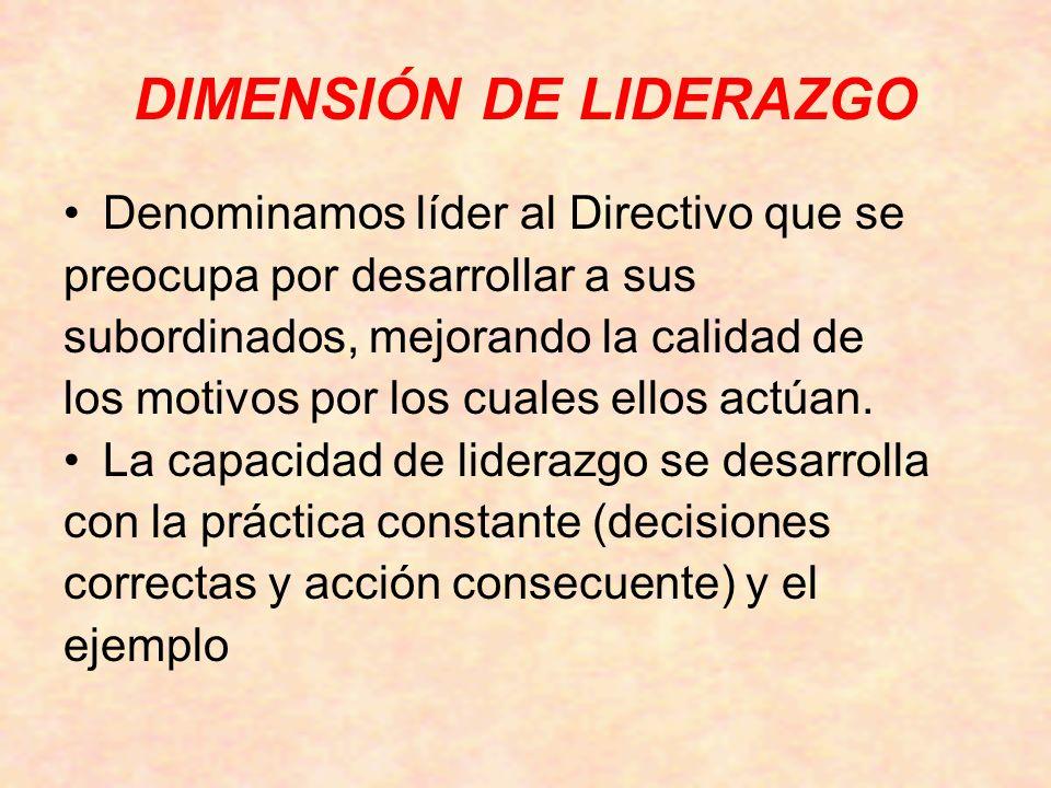 DIMENSIÓN DE LIDERAZGO