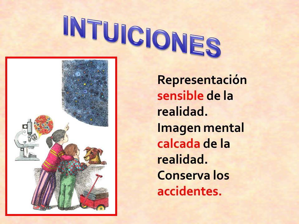 INTUICIONES Representación sensible de la realidad.