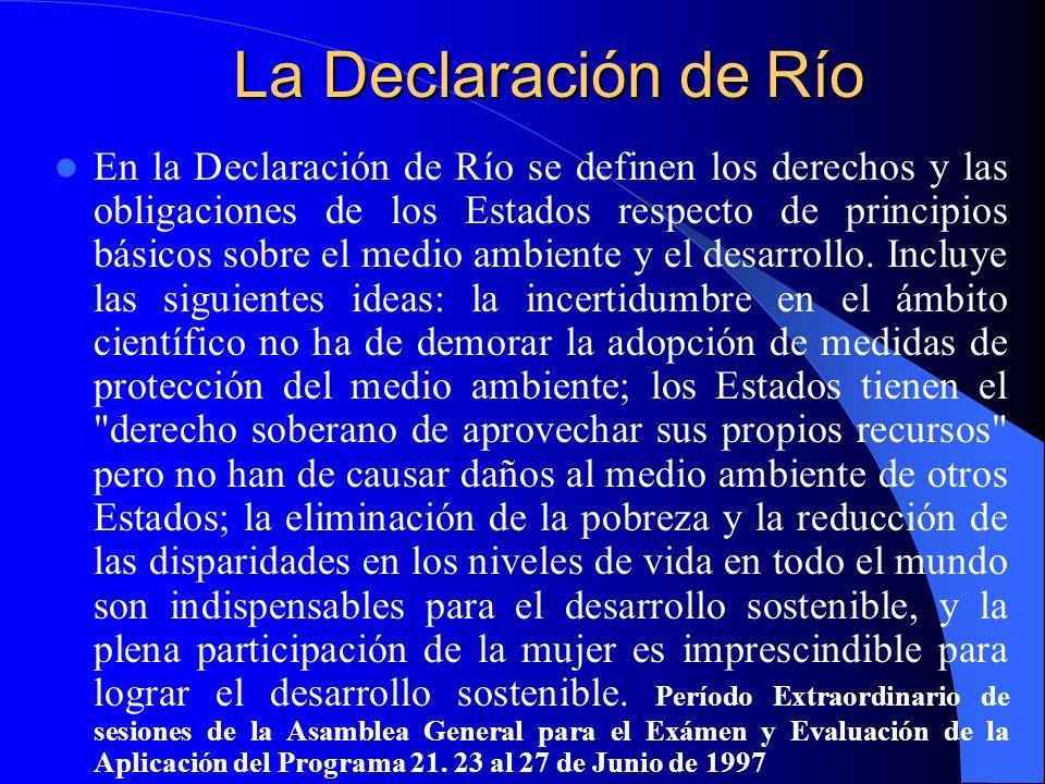 La Declaración de Río