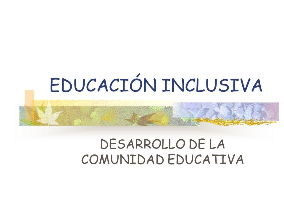 DESARROLLO DE LA COMUNIDAD EDUCATIVA