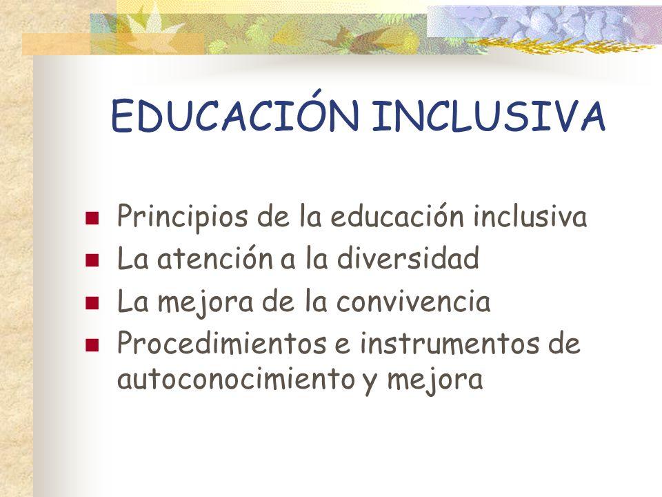 EDUCACIÓN INCLUSIVA Principios de la educación inclusiva
