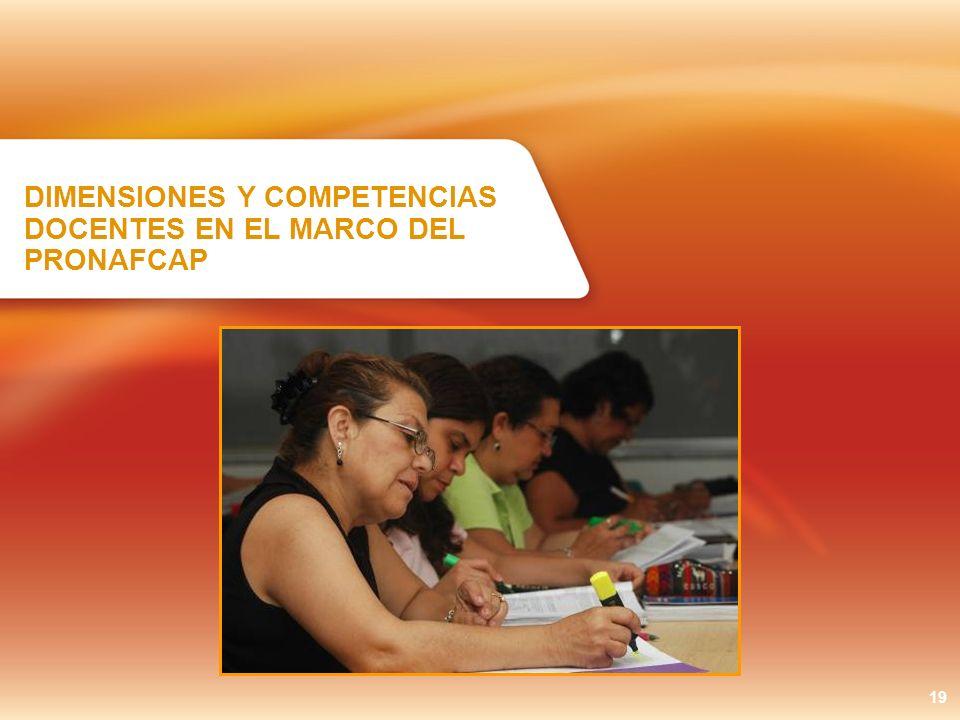 DIMENSIONES Y COMPETENCIAS DOCENTES EN EL MARCO DEL PRONAFCAP