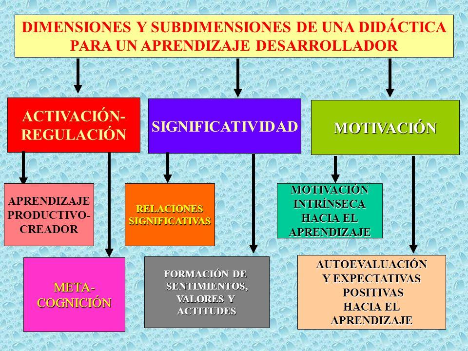 DIMENSIONES Y SUBDIMENSIONES DE UNA DIDÁCTICA