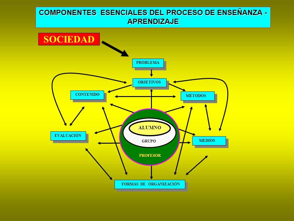 COMPONENTES ESENCIALES DEL PROCESO DE ENSEÑANZA -