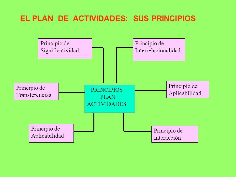 EL PLAN DE ACTIVIDADES: SUS PRINCIPIOS