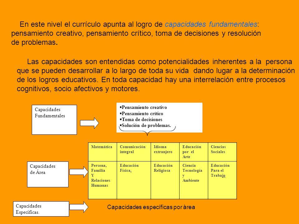 cognitivos, socio afectivos y motores.
