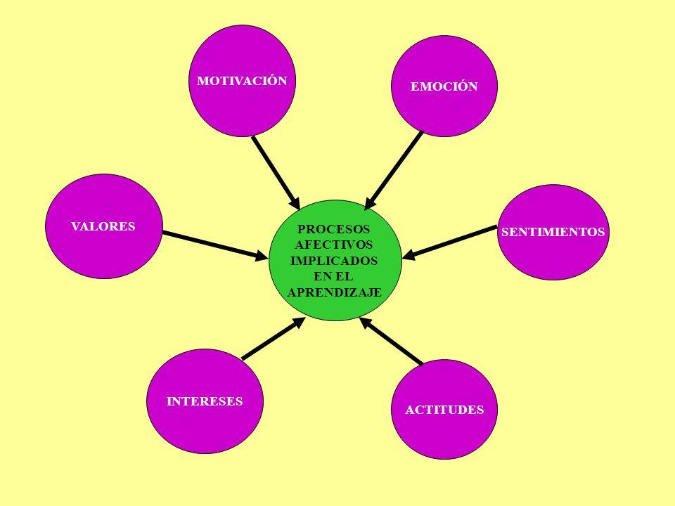 MOTIVACIÓN EMOCIÓN. VALORES. SENTIMIENTOS. PROCESOS. AFECTIVOS. IMPLICADOS. EN EL. APRENDIZAJE.
