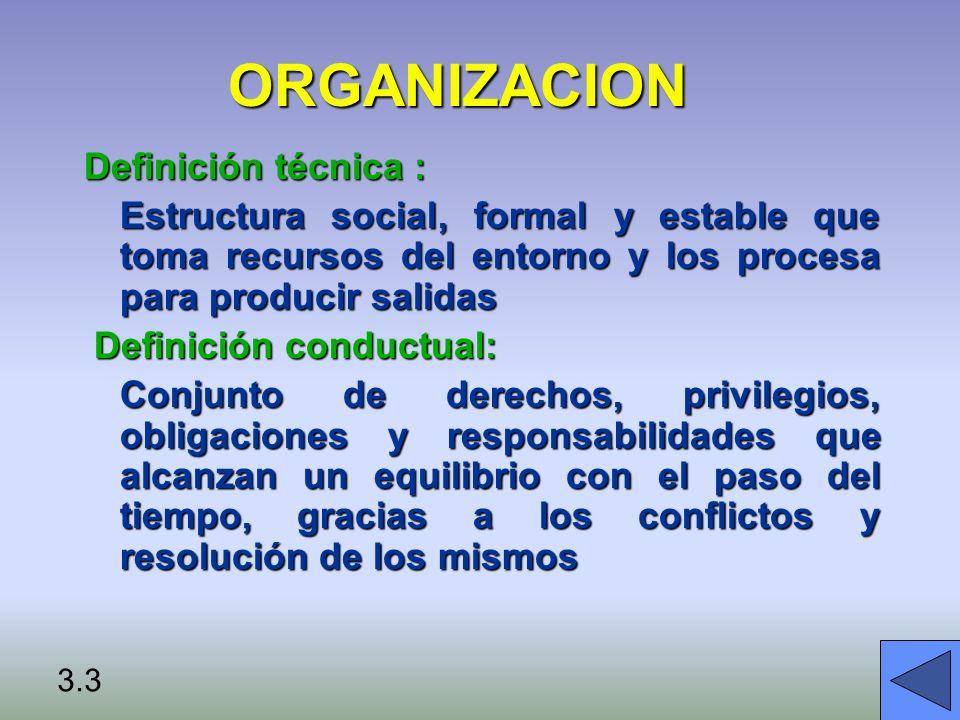 ORGANIZACION Definición técnica :