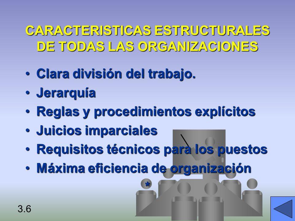 CARACTERISTICAS ESTRUCTURALES DE TODAS LAS ORGANIZACIONES