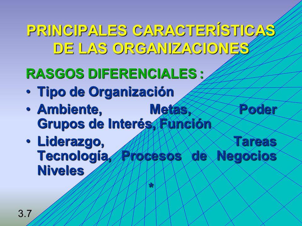 PRINCIPALES CARACTERÍSTICAS DE LAS ORGANIZACIONES