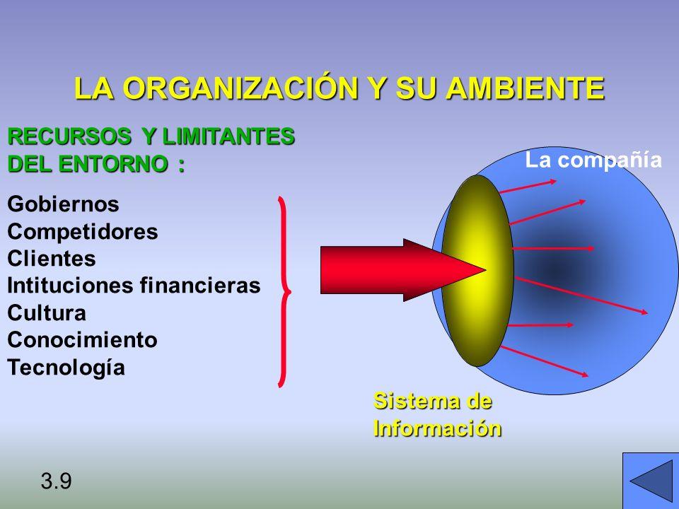 LA ORGANIZACIÓN Y SU AMBIENTE