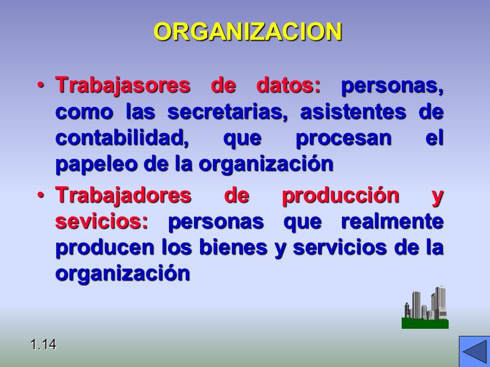 ORGANIZACION Trabajasores de datos: personas, como las secretarias, asistentes de contabilidad, que procesan el papeleo de la organización.
